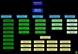 ORGANIGRAMA KELME WEB 14-15